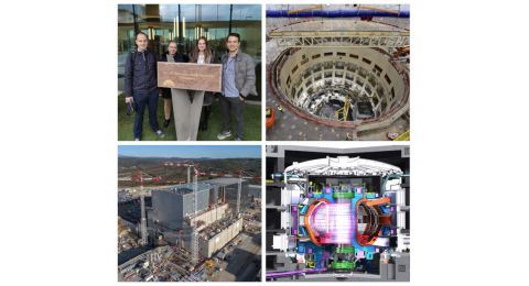 ITER project statement